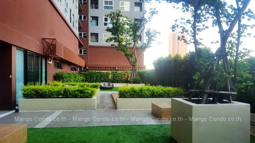 Plum Ramkhamheang for rent_24 mc
