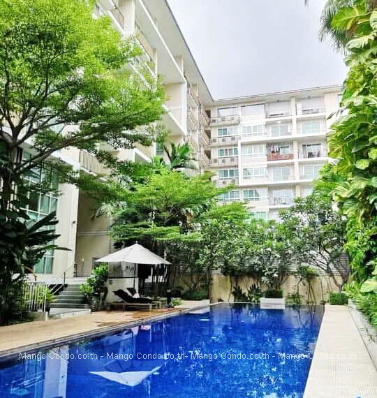 The clover thonglor 1 bed (9) mc
