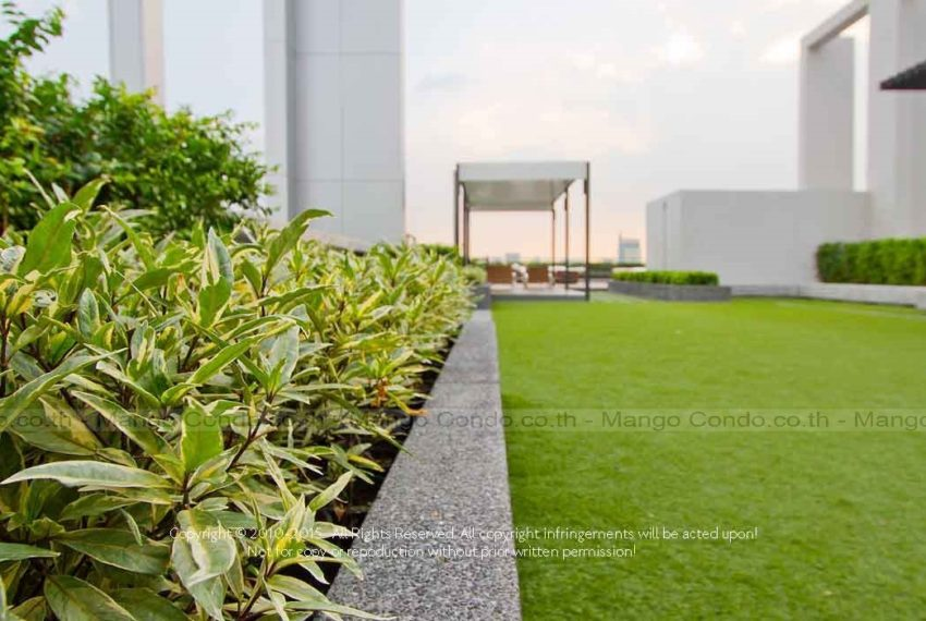 midst-roof-garden